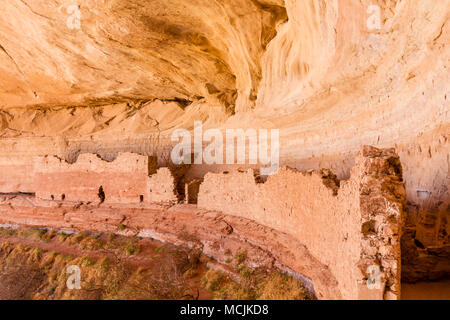 17 or 16 Room Ruin, an Ancestral Puebloan ruin in a north facing alcove along the San Juan River near Bluff, Utah. - Stock Photo