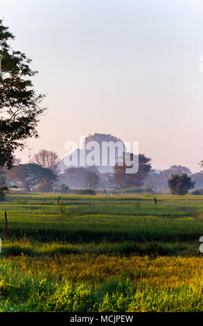 View of iconic Sigiriya rock over misty fertile paddy fields in morning light, Dumballa in the cultural triangle of Sri Lanka - Stock Photo