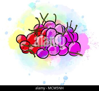 Colored drawing of cherries. Fresh design of colorful fruits made in watercolor style. Modern vector marketing illustration on white background. - Stock Photo