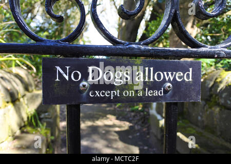 No dogs allowed sign on an ornate wrought iron gate - John Gollop - Stock Photo