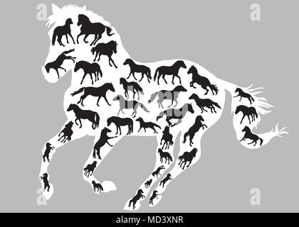 Set of different  isolated horses silhouettes (standing, trotting and galloping) in black color inside big galloping silhouette of horse in white colo - Stock Photo