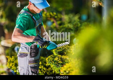 Spring Time Plants Trimming Work. Caucasian Gardener in the Garden. Stock Photo