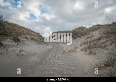 The beach in the Outer Banks, North Carolina. - Stock Photo
