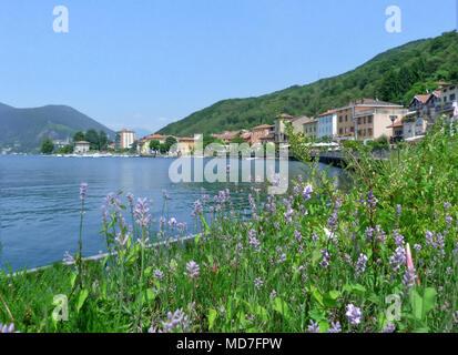 view of Porto Ceresio a  summer landscape of Lake Lugano, italy - Stock Photo