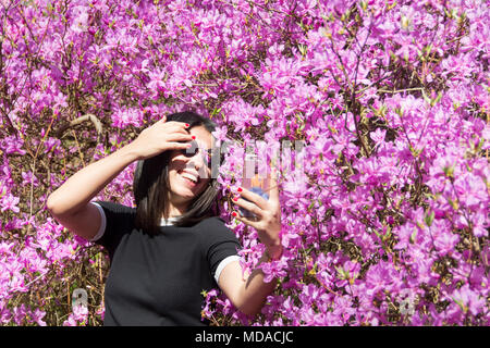 London, England, UK. 18 April, 2018.  On one of the hottest days on record in the UK in April, a young woman takes a selfie surrounded by  Azaleas. © Benjamin John/ Alamy Live News. - Stock Photo