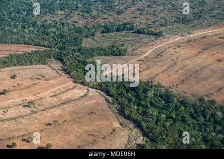 Deforestation in the state of Mato Grosso do Sul, Brazil - Stock Photo