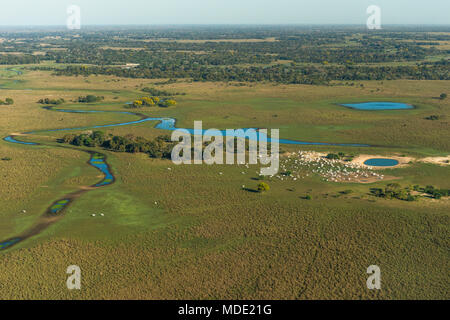 Cattle ranch in the Pantanal of Brazil - Stock Photo