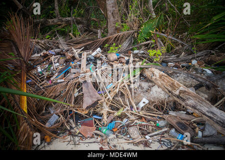 Garbage pile deposit Branches wood, Pile of wood and plastic bottles waste and debris floating on water surface at river water dirty, Problem of trash - Stock Photo
