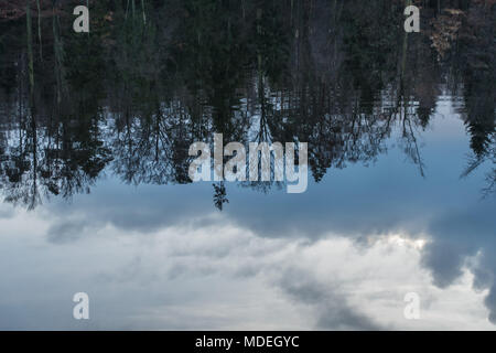 Clouds and trees reflections on the surface of the lake - Stock Photo