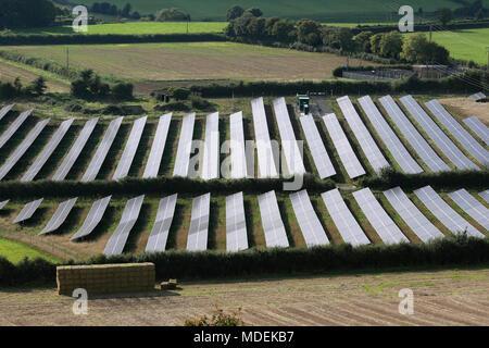 Looking down on the photovoltaic arrays that comprise the Milborne Port Solar Farm, near Milborne Port, Somerset. - Stock Photo