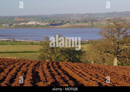 Ploughed Farmland by the Exe Estuary with Lympstone Village Beyond, in the Golden Light of a Spring Evening. Powderham, Exeter, Devon, UK. - Stock Photo