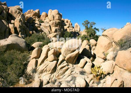 Rock Climb Hidden Valley Big Rocks Prickly Pear Cactus Mojave Desert Joshua Tree National Park - Stock Photo