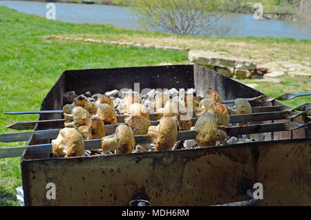 Marinated champignons preparing on a barbecue grill over charcoal. champignons or Shish kebab popular in Eastern Europe. Shashlyk (skewered meat) was  - Stock Photo