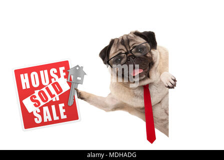 smiling business pug dog with glasses and tie, holding up red house sold sign and key, isolated on white background - Stock Photo