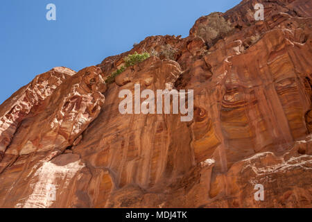 Rocks of pink sandstone in Petra, Jordan - Stock Photo