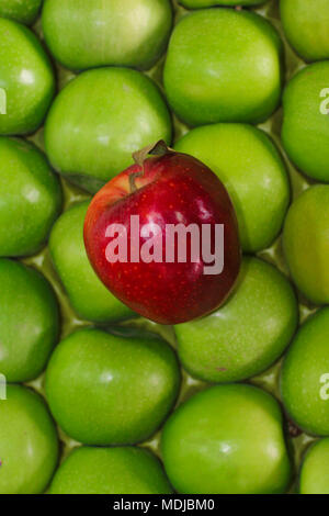 Red apple standing out from large group of green apples. - Stock Photo