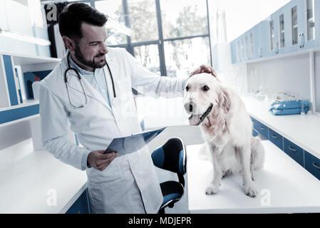 Cheerful nice veterinarian stroking the dog - Stock Photo