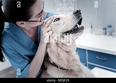 Pleasant smart woman examining the dog - Stock Photo