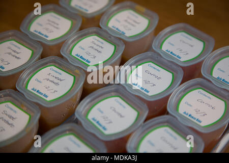 Preparing baby food - Stock Photo
