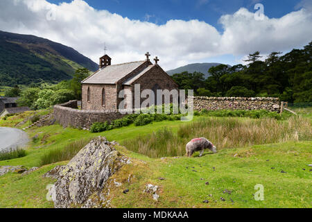 St James Church Buttermere surrounded by a dry stone wall. The Lake District Cumbria UK with sheep grazing in the foreground - Stock Photo