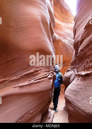 Hiker in Spooky Gulch slot canyon, at Dry Fork, a branch of Coyote Gulch, Hole In The Rock Road, Grand Staircase Escalante National Monument, Utah, US - Stock Photo