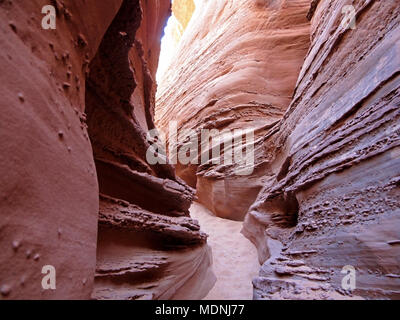 Spooky Gulch slot canyon, at Dry Fork, a branch of Coyote Gulch, Hole In The Rock Road, Grand Staircase Escalante National Monument, Utah, USA - Stock Photo