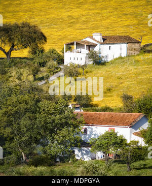 Type of rural house on yellow hill. - Stock Photo
