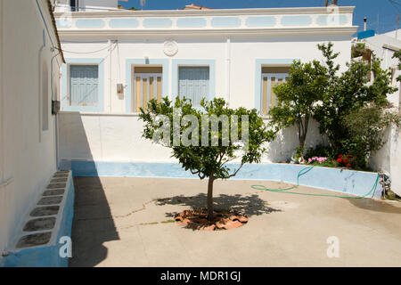 Greece, Aegean Islands, Karpathos island,  Aperi courtyard of a traditional house with the inevitable olive tree in the center - Stock Photo