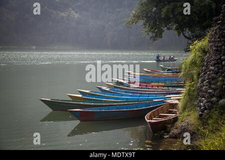 A group of colourful rowing boats moored on the shoreline of Phewa lake in Pokhara, Nepal - Stock Photo
