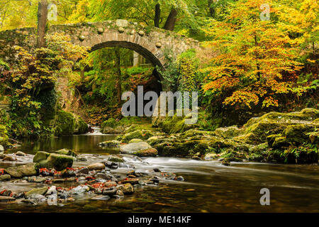 An Autumnal shot of Foley's Bridge over the Shimna River in Tollymore Forest Park in County Down, Ireland.