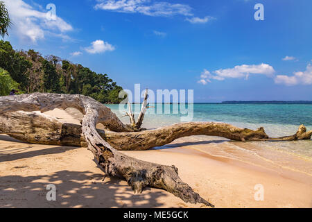 Scenic Jolly Buoy island sea beach with fallen tree trunk and blue ocean waters at Andaman India. - Stock Photo
