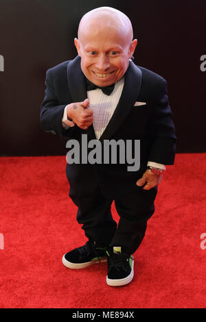 ***FILE PHOTO*** Verne Troyer Has Passed Away at Age 49 PHOENIX, ARIZONA-MARCH 19: Verne Troyer walks the red carpet at Muhammad Ali's Celebrity Fight Night XVII. JW Marriott Desert Ridge Resort & Spa Phoenix, Arizona. March 19, 2011. © Max Simbron/MediaPunch Inc. - Stock Photo