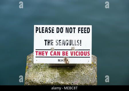 Please do not feed the seagulls sign with the warning that they can be vicious to discourage agressive behaviour and attacks in Mevagissey Cornwall - Stock Photo