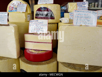 Cheeses for sale on market stall on Bury market in bury lancashire - Stock Photo