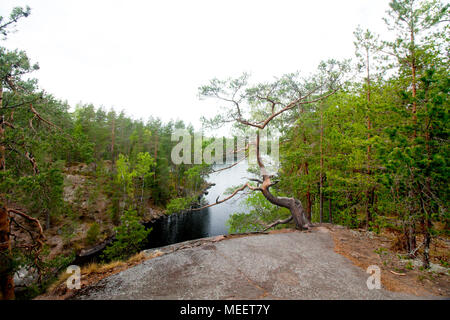 Beautiful landscape in the national park Repovesi, Finland, South Karelia - Stock Photo