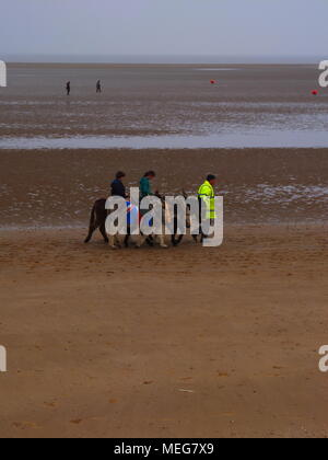Donkey rides at low tide on Cleethorpes beach. - Stock Photo