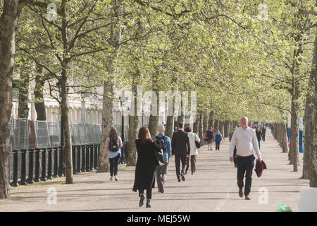 London UK. 23rd April 2018. UK Weather: Morning commuters walking in the spring sunshine down The Mall on a pleasant sunny morning as London wakes to cooler temperatures Credit: amer ghazzal/Alamy Live News - Stock Photo