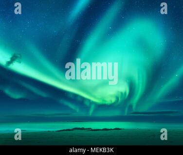 Aurora. Aurora borealis above the sea. Lofoten islands, Norway. Green northern lights. Starry sky with polar lights. Night winter landscape with auror - Stock Photo