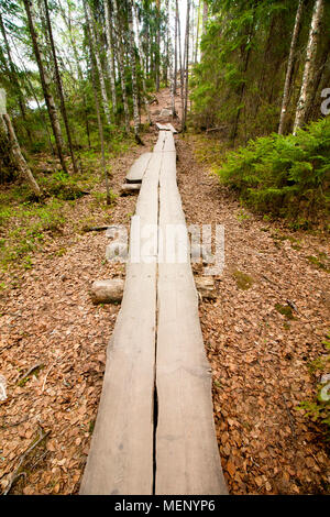 Wooden road in the national park Repovesi, Finland, South Karelia - Stock Photo
