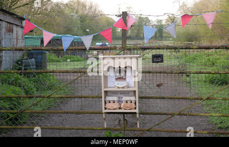 April 2018 - Eggs for sale at the farm yard gate, with colourful flags to attract attention. - Stock Photo