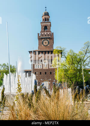A view of the Castello Sforzesco in Milan, Italy with viper's bugloss - Echium vulgare flower in foreground - Stock Photo