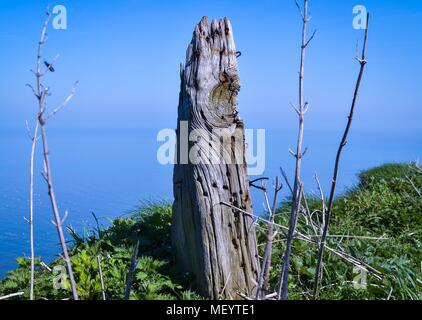 Old Fence Post on the Cliff Edge - Stock Photo