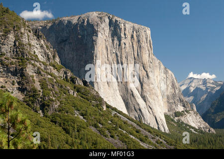 El Capitan in the Yosemite Valley National Park, California, USA - Stock Photo