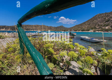 Mediterranean plants frame the fishing boats in the turquoise sea Punta Molentis Villasimius Cagliari Sardinia Italy Europe - Stock Photo