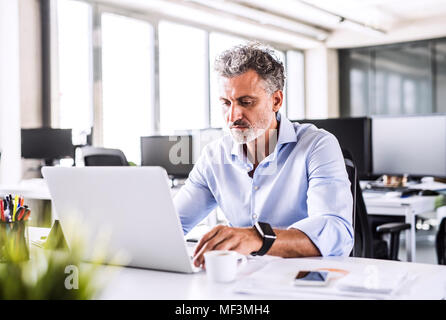 Mature businessman sitting at desk in office using laptop - Stock Photo