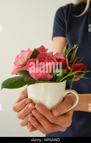Young woman holds a cup with beautiful fresh roses - Stock Photo