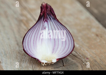 A half of a red onion on a cutting board - Stock Photo