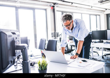 Mature businessman using laptop at desk in office - Stock Photo