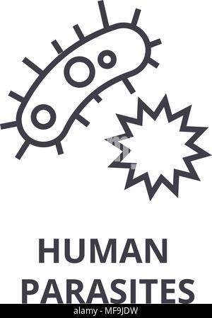 human parasites thin line icon, sign, symbol, illustation, linear concept, vector  - Stock Photo