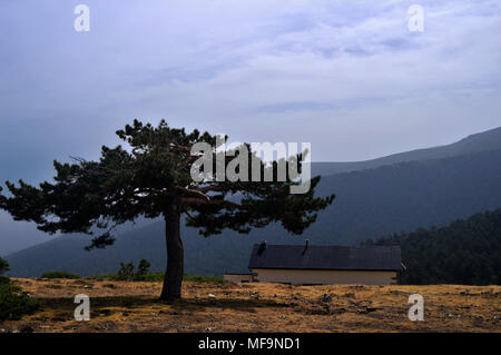 Mountain landscape with a tree and a house in the Sierra de Guadarrama National Park, near Madrid. Spain - Stock Photo